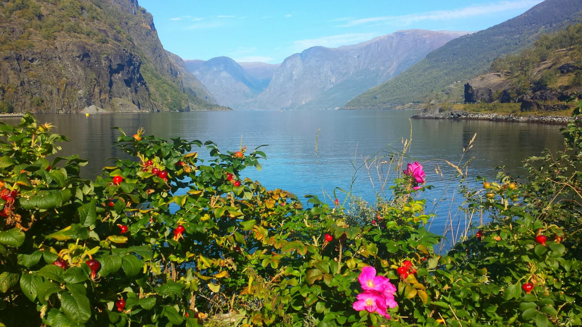 Beautiful_Flam_Norway_Scenery_Fjords_Sognefjord