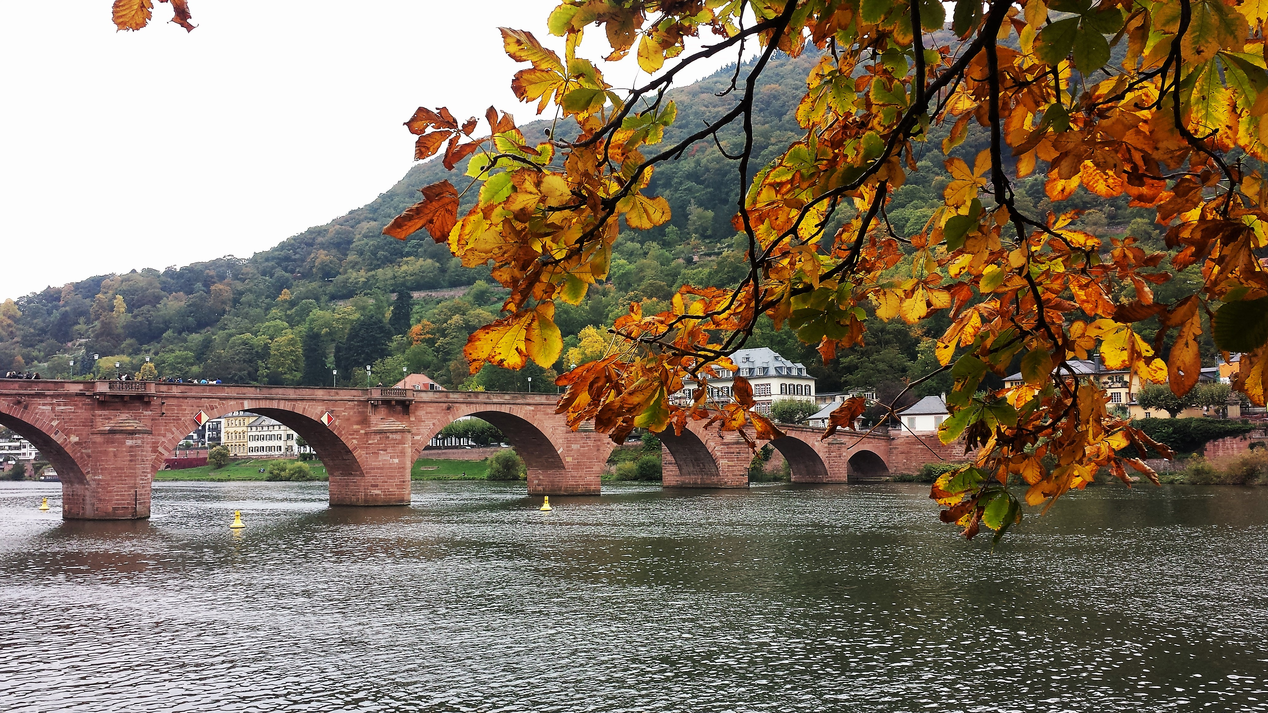 Autumn_Heidelberg_Germany