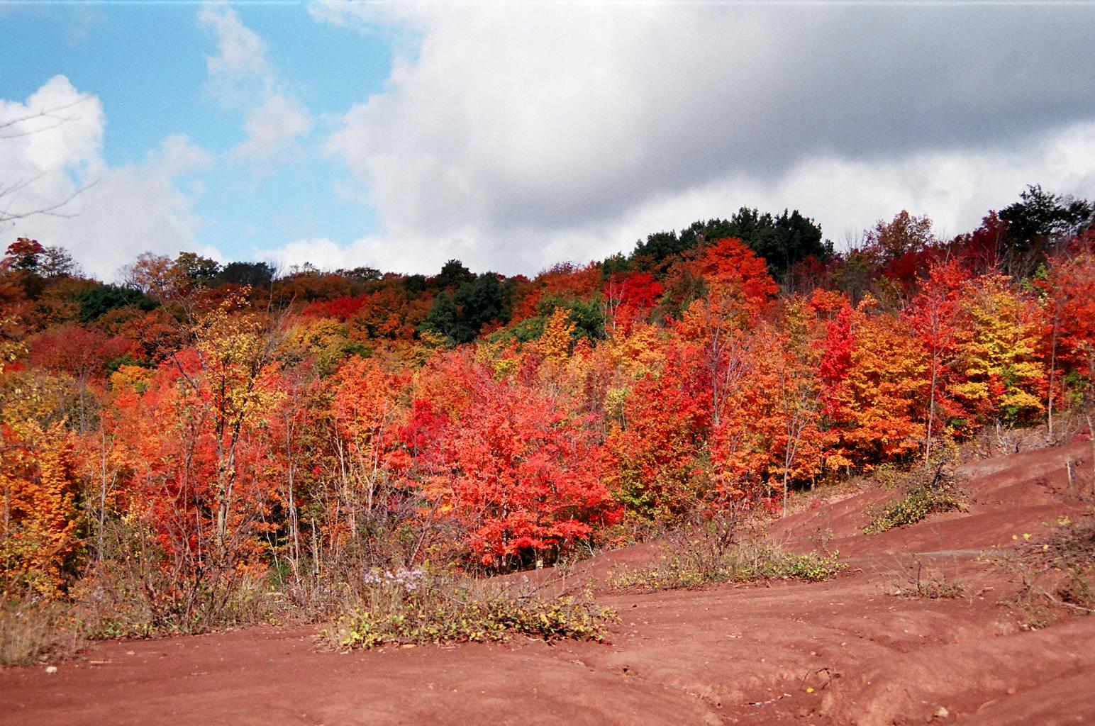 Autumn_Ontario_Canada