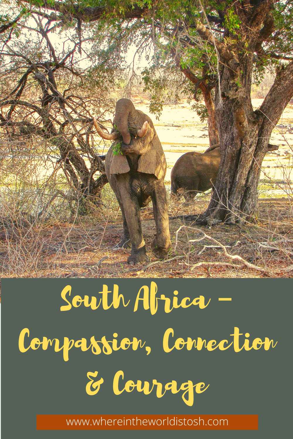 South Africa - Compassion Connection Courage