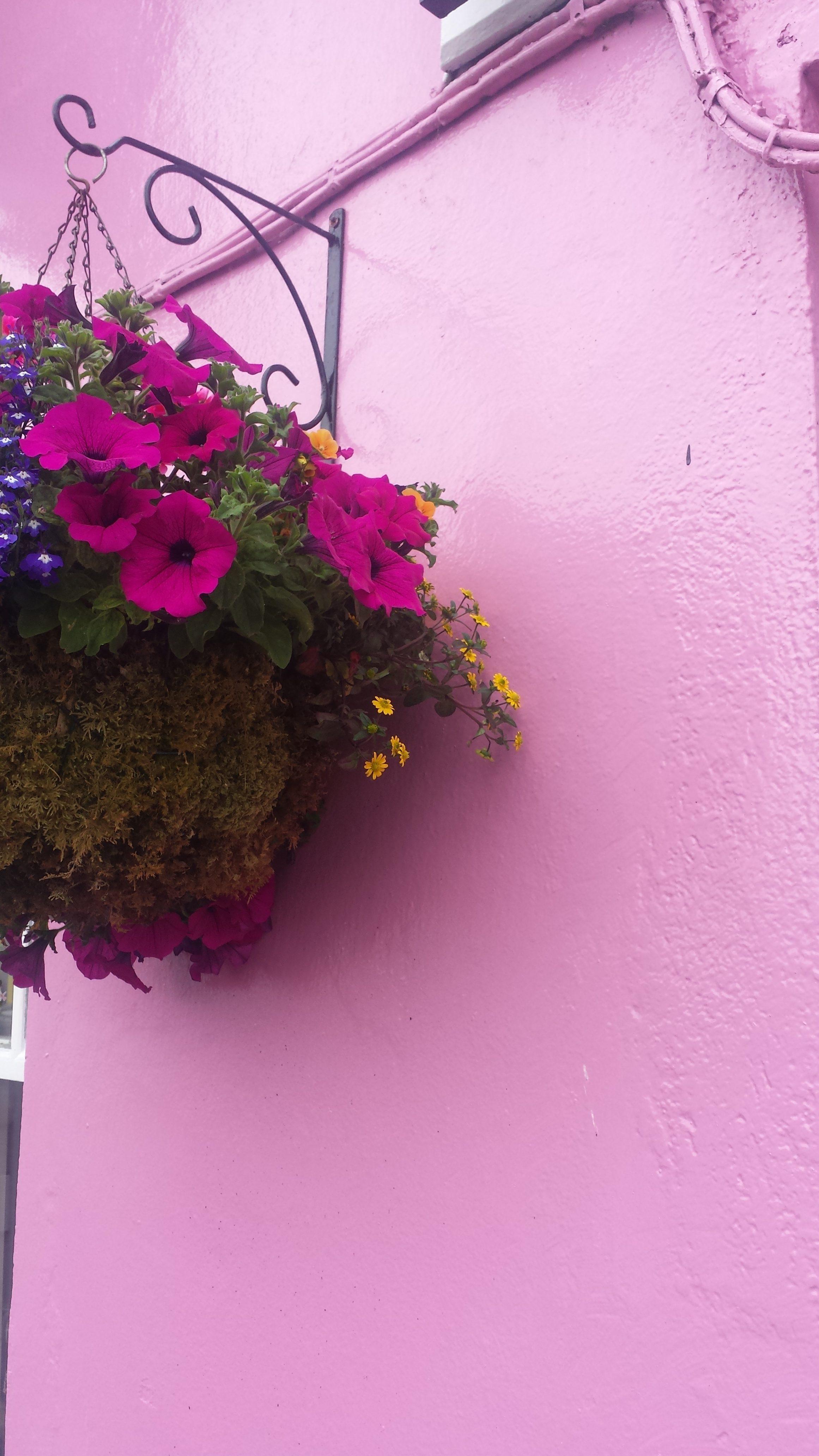 Exploring_Killarney_The_Ring_of_Kerry