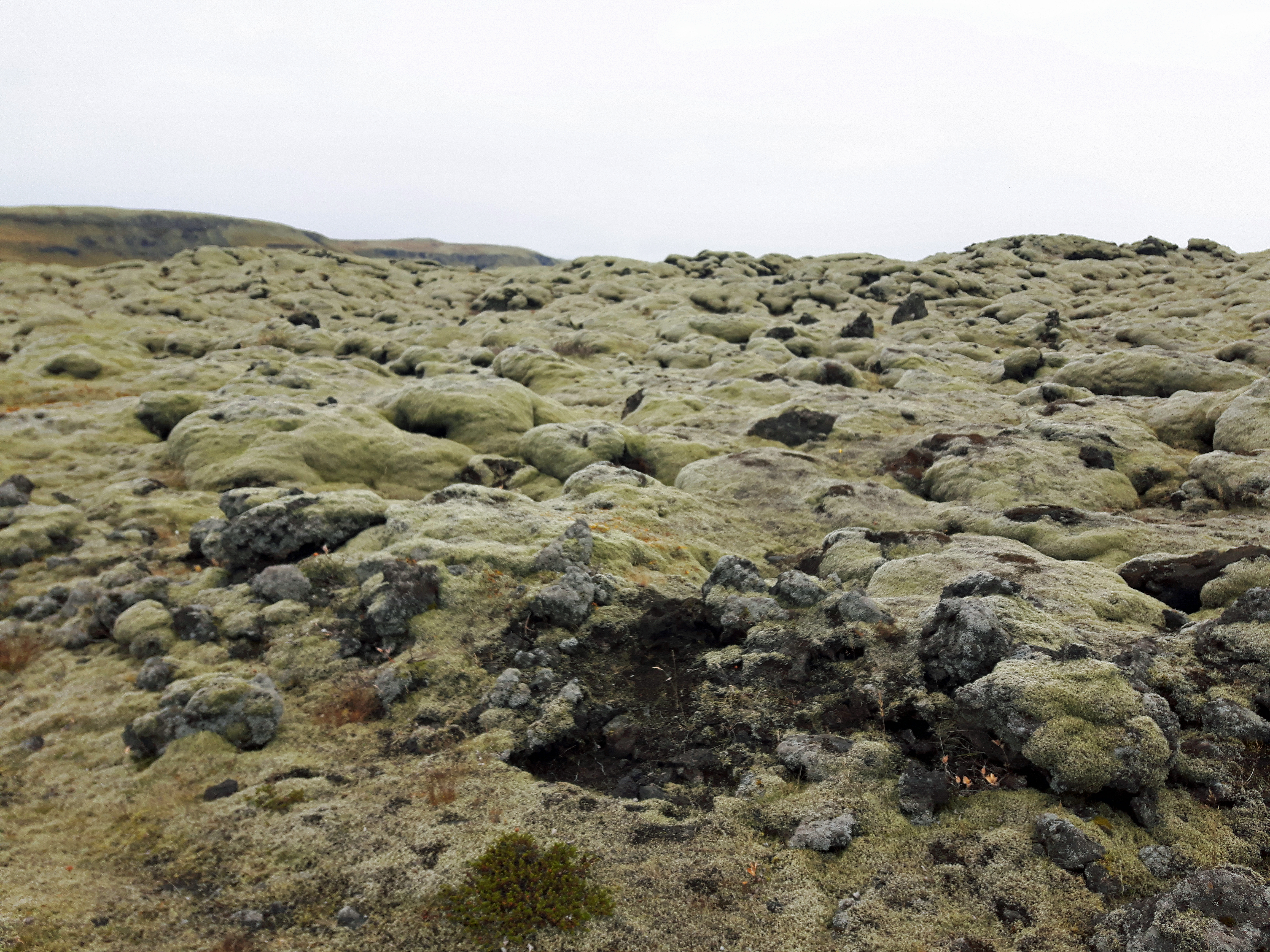 Moss_Lava_Rocks_Ring_Road_Iceland