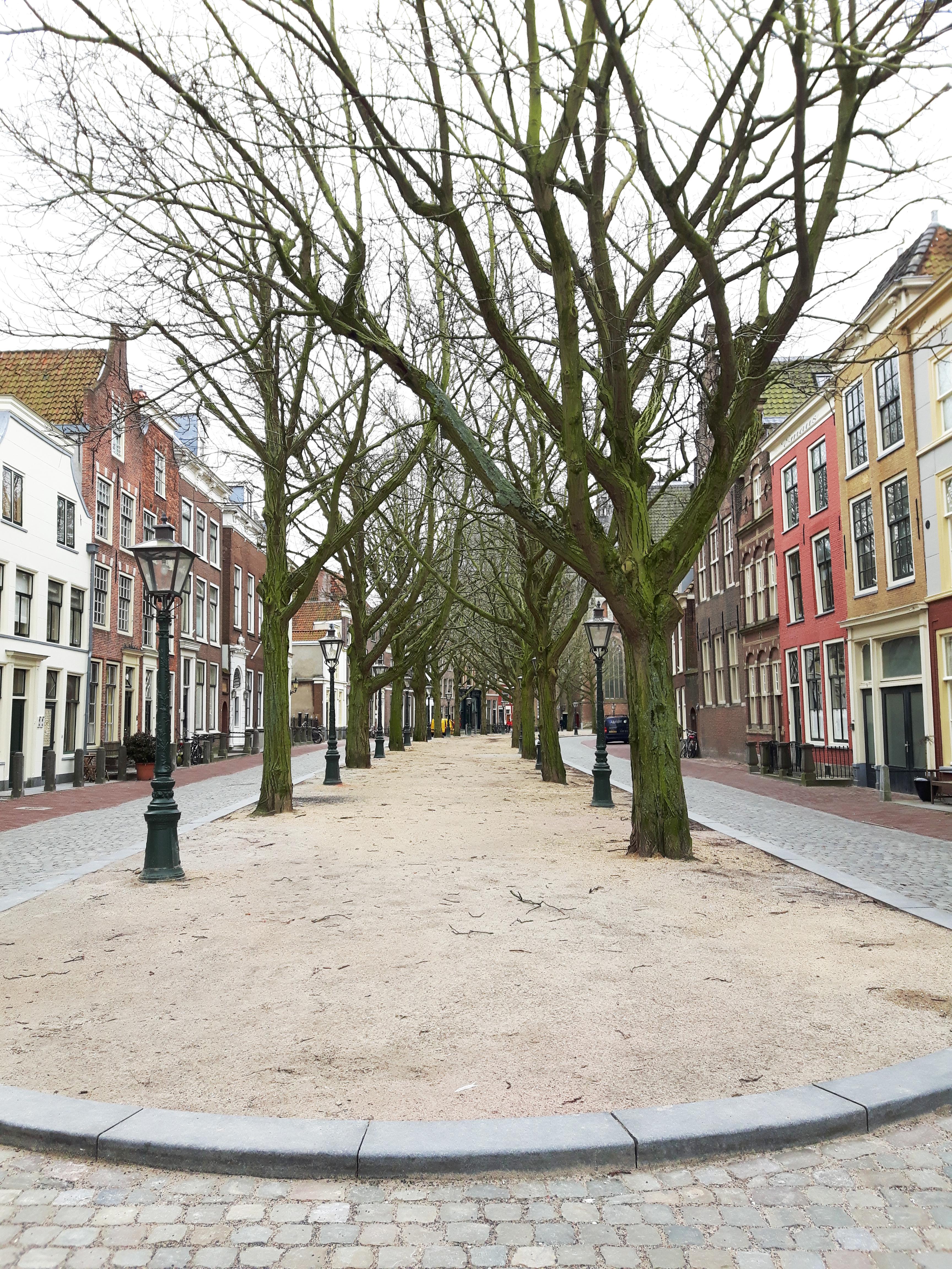 Hooglandse_Kerkgracht_Leiden_Netherlands