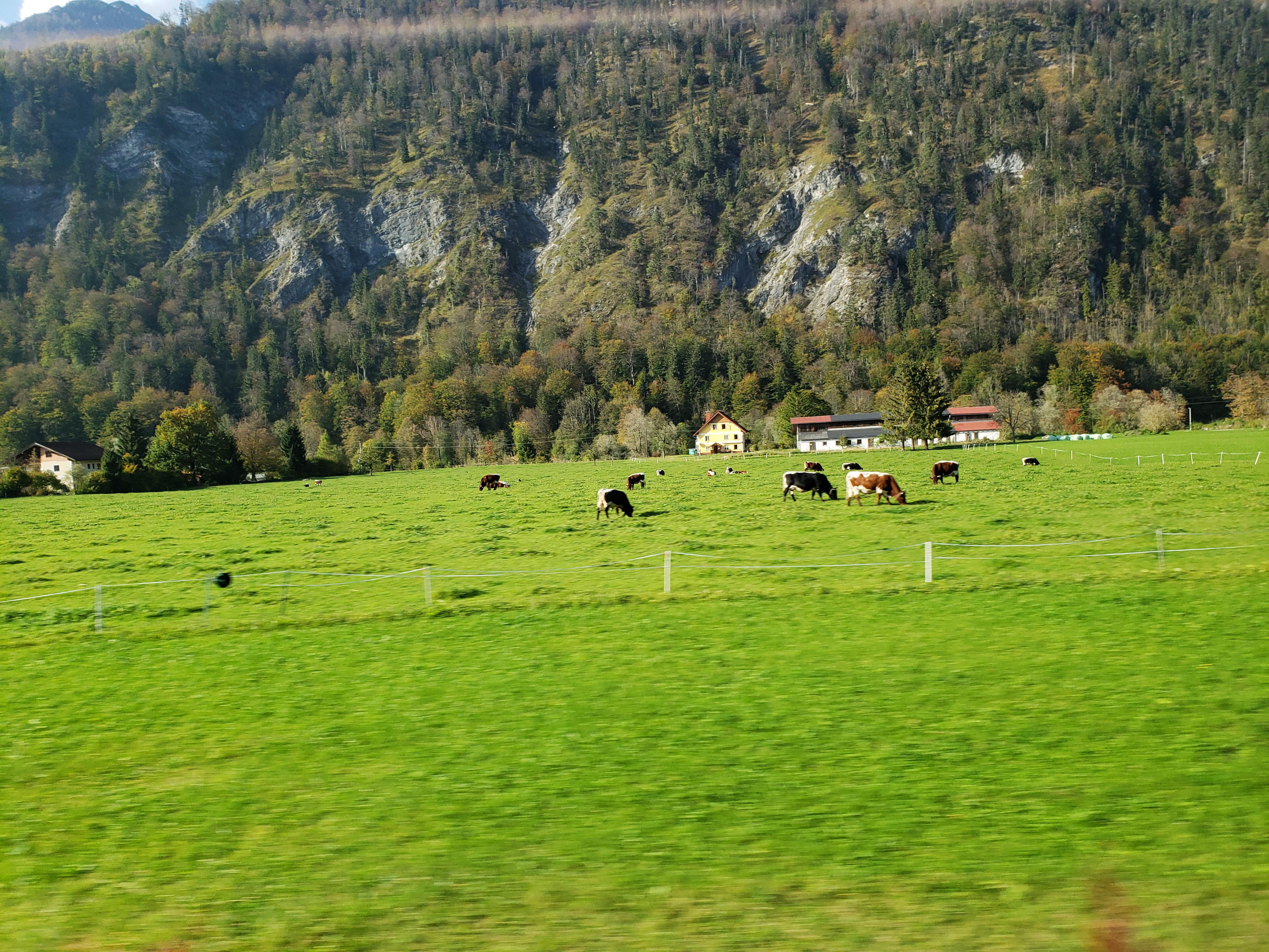 Salzkammergut_Austria_Europe