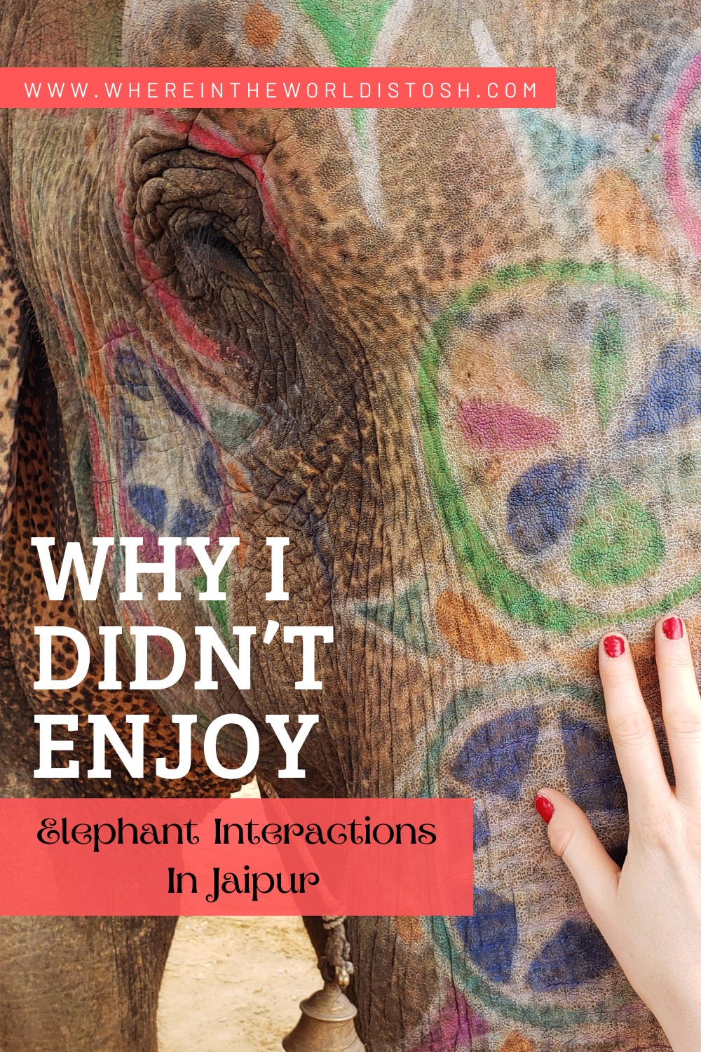Why I Didnt Like Elephant Interactions In Jaipur